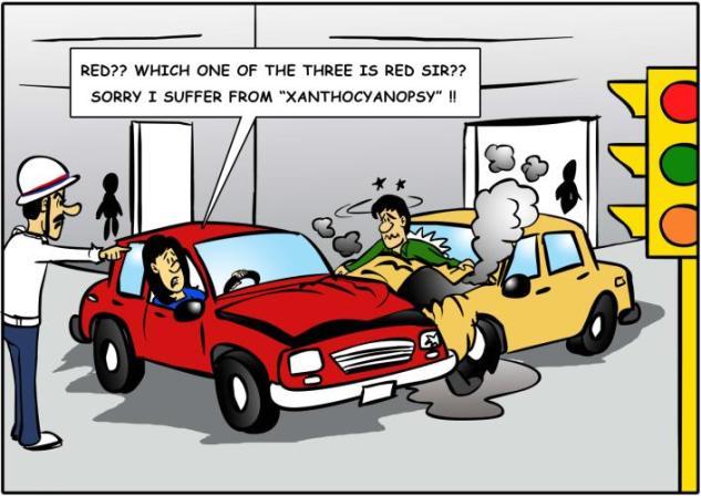 Xanthocyanopsy 2