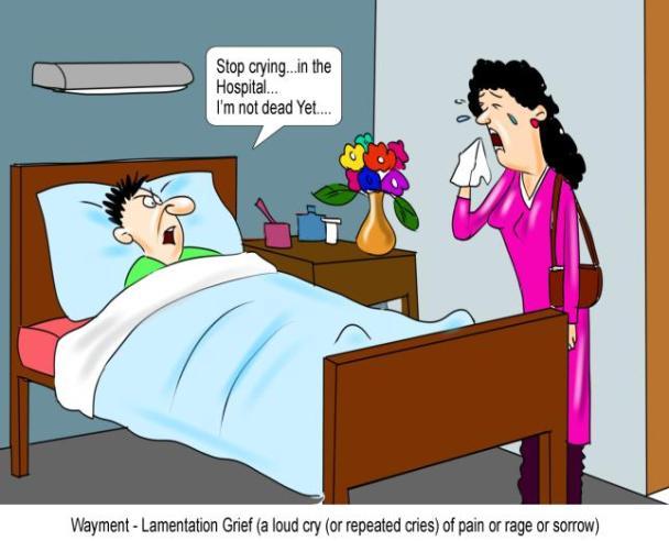 Wayment Lamentation Grief